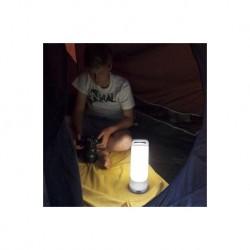 Lampe à poser Gris Argenté DRAGONFLY, LED Intégrée, 1W, 120 lumens, 4000K, IP54, SOLAIRE, Classe III